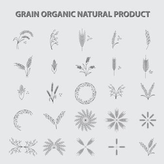 Conjunto de produtos naturais orgânicos de grãos