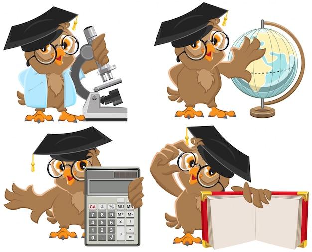 Conjunto de professores de corujas