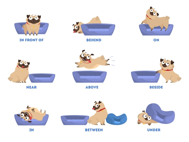 Conjunto de pug. aprendizagem do conceito de preposição. animal acima e atrás