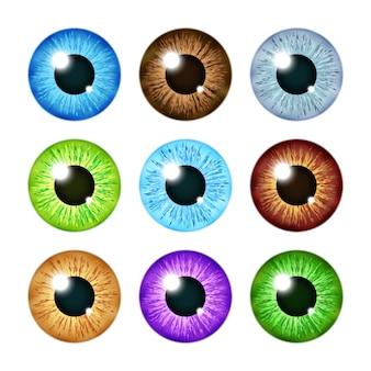 Conjunto de pupilas de íris de olho colorido multi realista