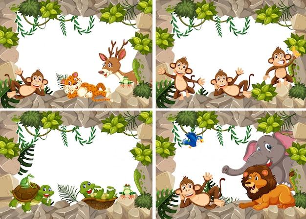 Conjunto de quadro de natureza animais selvagens