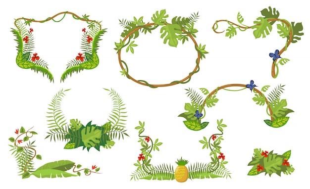 Conjunto de quadro de plantas tropicais