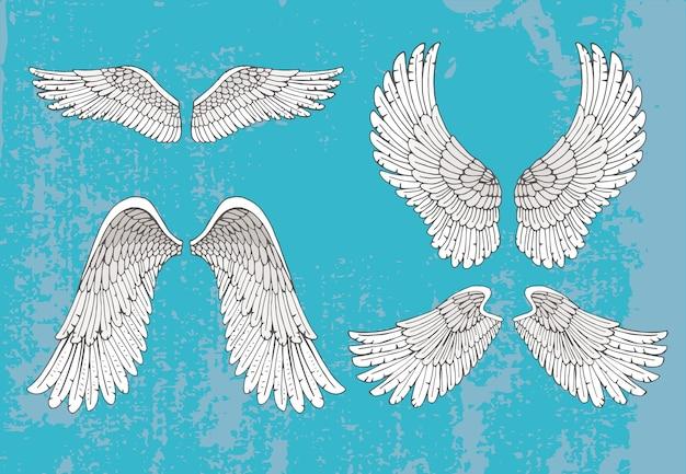 Conjunto de quatro pares de asas brancas desenhadas à mão na posição aberta estendida com detalhes de penas