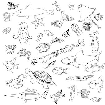 Conjunto de rabiscos desenhados à mão de animais marinhos