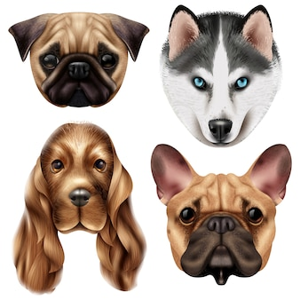 Conjunto de raças de cães realistas