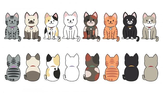 Conjunto de raças de gatos engraçado dos desenhos animados.