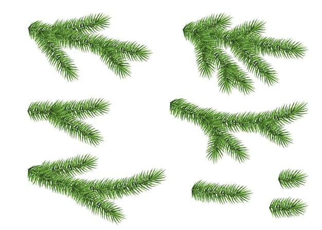 Conjunto de ramo de abeto, isolado no fundo branco. abeto verde. árvore de natal realista. ilustração vetorial para cartões de natal.