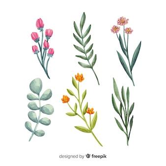 Conjunto de ramo floral em aquarela