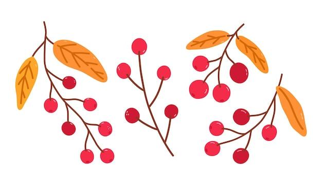 Conjunto de ramos com cranberries e folhas douradas isoladas em branco