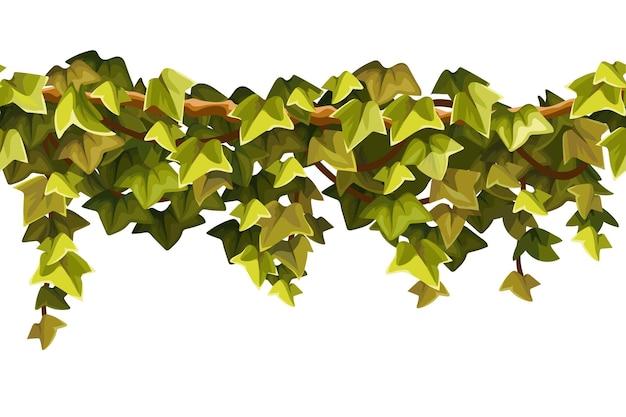 Conjunto de ramos de cipó