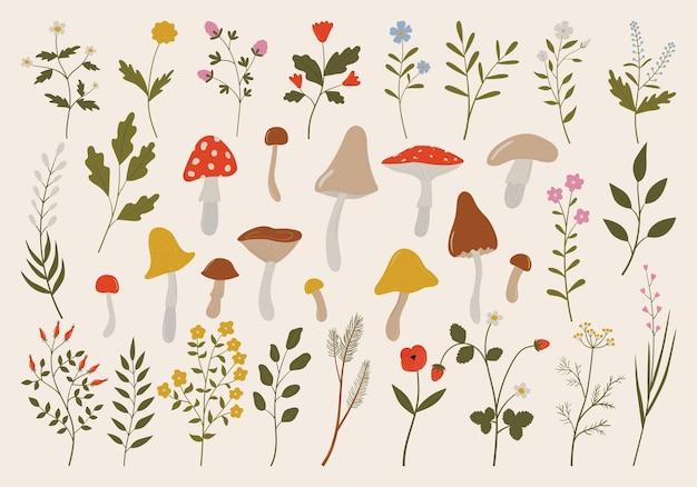 Conjunto de ramos de flores de ervas selvagens vintage, folhas e cogumelos