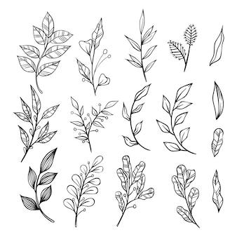 Conjunto de ramos de mão desenhada florais e elementos de folhas em fundo branco.