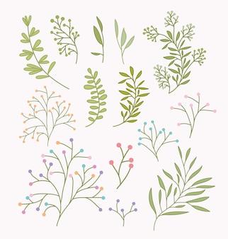 Conjunto de ramos de primavera e folhas