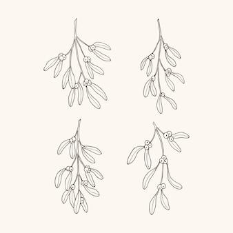 Conjunto de ramos de visco desenhados à mão