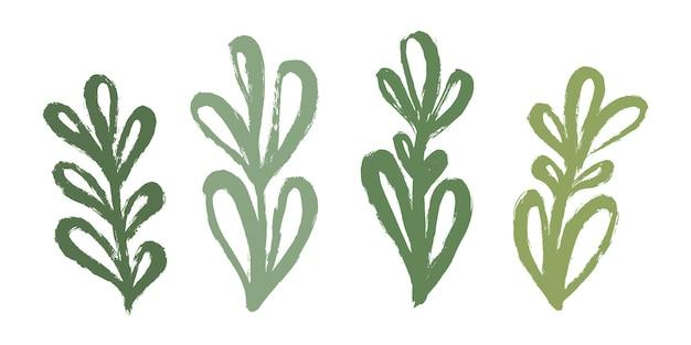 Conjunto de ramos verdes orgânicos com folhas, desenhados à mão com uma pincelada.