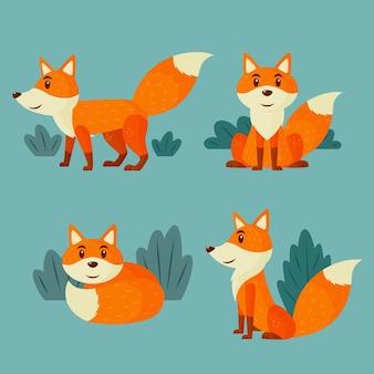 Conjunto de raposa desenhada de mão