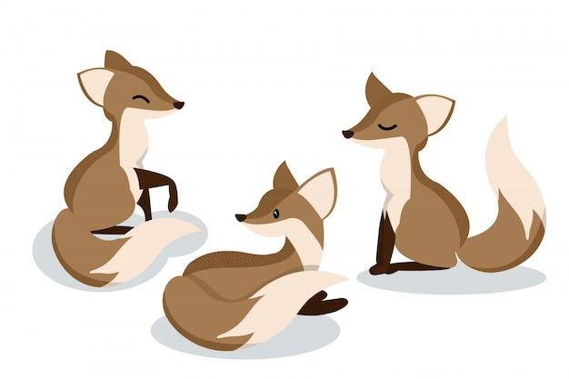 Conjunto de raposas bonito dos desenhos animados.