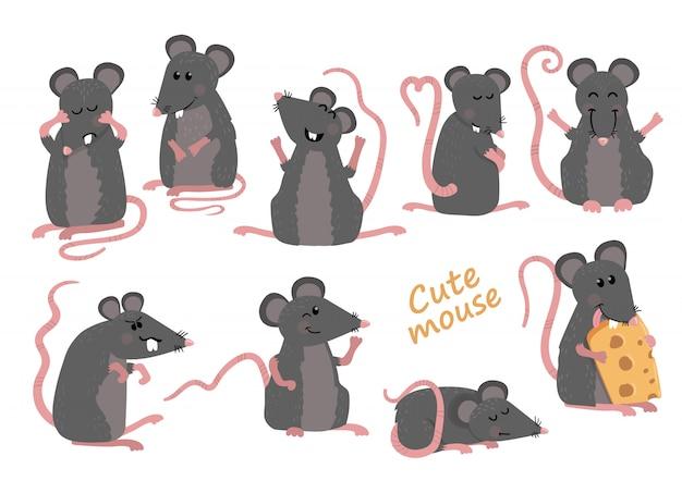 Conjunto de ratos cute em várias poses em estilo cartoon