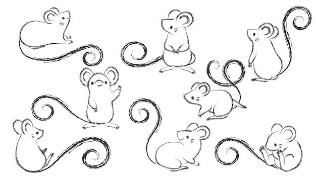 Conjunto de ratos de mão desenhada, mouse em poses diferentes no bacground branco.