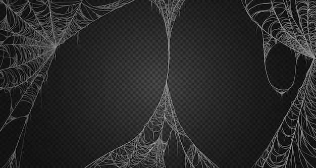 Conjunto de realismo teia de aranha.
