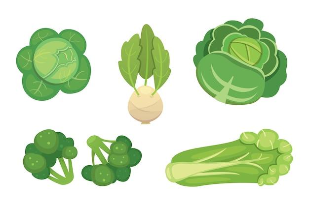 Conjunto de repolho e alface. brócolis verde vegetal, couve-rábano e outras couves diferentes.