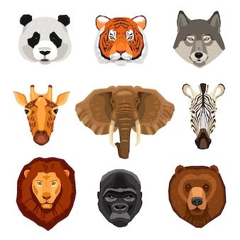 Conjunto de retratos de animais dos desenhos animados