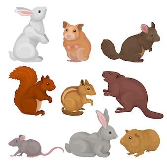 Conjunto de roedores bonito, pequenos animais selvagens e domésticos ilustração sobre um fundo branco