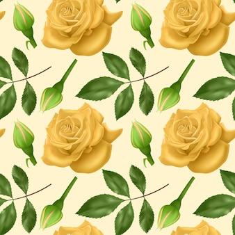 Conjunto de rosas coloridas realistas