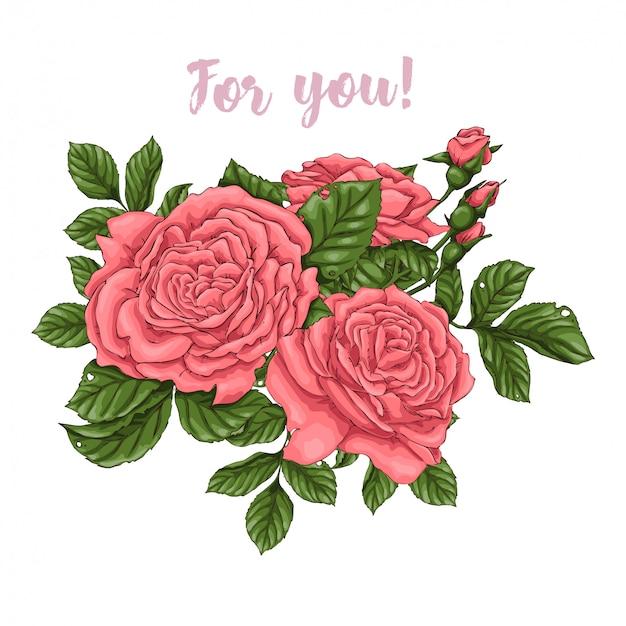 Conjunto de rosas corais. desenho à mão