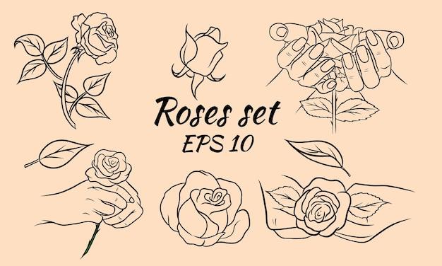 Conjunto de rosas desenhadas à mão, botões de rosa e folhas. linha de rosas. decoração e decorações. conjunto de ilustrações vetoriais.