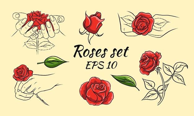 Conjunto de rosas desenhadas à mão, botões de rosa e folhas. rosas vermelhas e linha. decoração e decorações.
