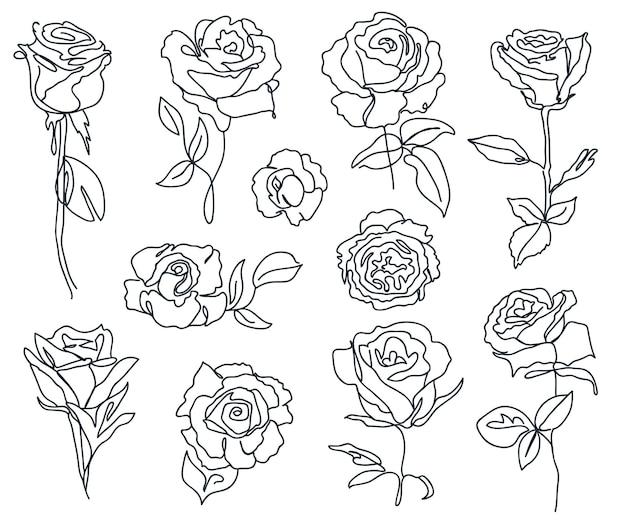 Conjunto de rosas e folhas lineares arte em preto e branco silhueta de contorno mínimo
