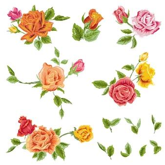 Conjunto de rosas em aquarela com fundo floral