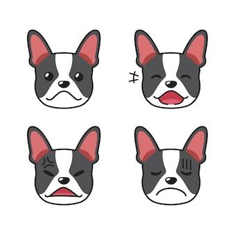 Conjunto de rostos de cachorro boston terrier mostrando emoções diferentes