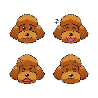 Conjunto de rostos de cachorro poodle marrom personagem mostrando emoções diferentes.