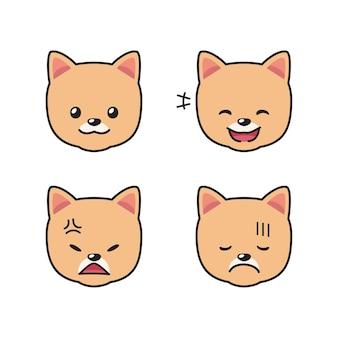 Conjunto de rostos de cães da pomerânia mostrando emoções diferentes