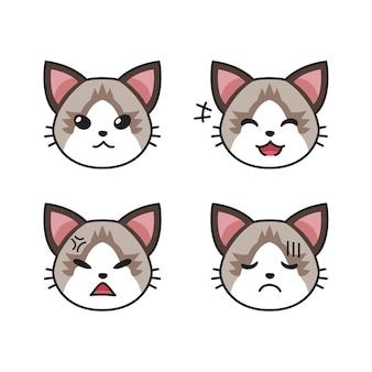 Conjunto de rostos de gato ragdoll, mostrando diferentes emoções para o projeto.