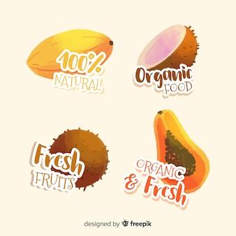 Conjunto de rótulo de frutas orgânicas em aquarela