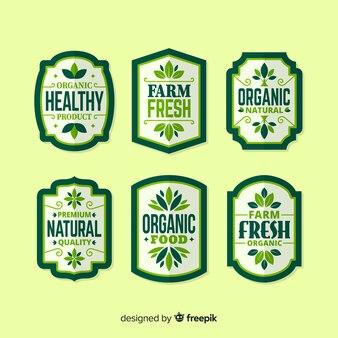 Conjunto de rótulo de frutas orgânicas planas