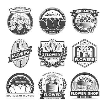 Conjunto de rótulo isolado vintage de estúdio de flor