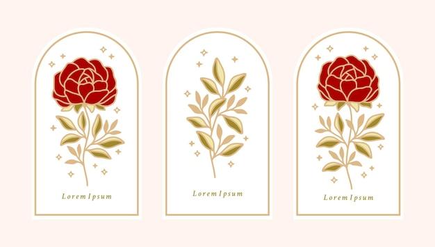Conjunto de rótulos botânicos vintage, flor rosa e folhas
