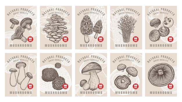 Conjunto de rótulos com cogumelos para lojas e mercados de comida vegetariana orgânica
