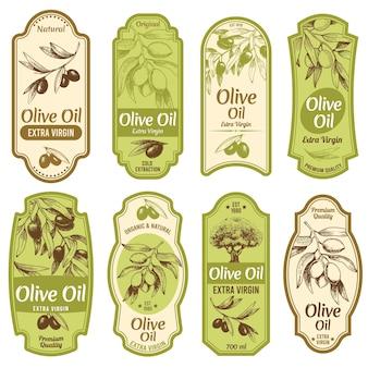 Conjunto de rótulos de azeite de oliva