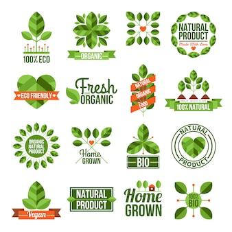 Conjunto de rótulos orgânicos e naturais