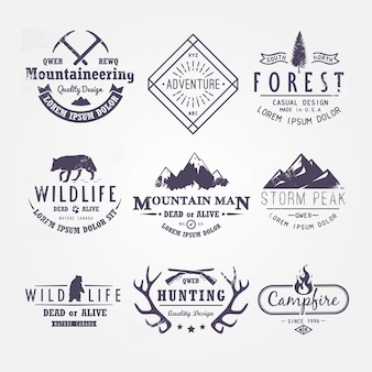 Conjunto de rótulos premium sobre temas de vida selvagem