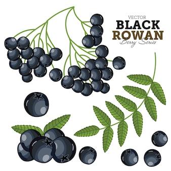 Conjunto de rowan preto