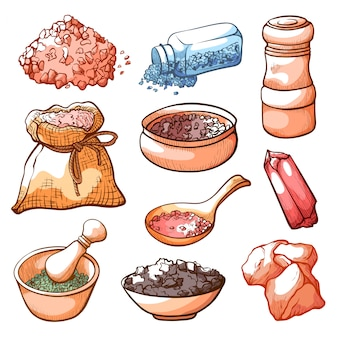 Conjunto de sal e ingredientes naturais de mão desenhada