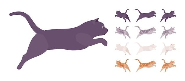 Conjunto de salto de gato com pedigree listrado de branco, preto, laranja, cinza