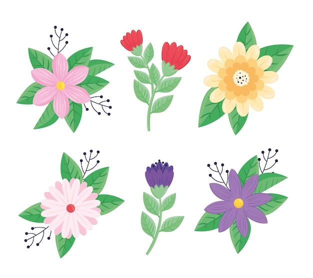 Conjunto de seis flores de beleza, ilustração de ícones de primavera
