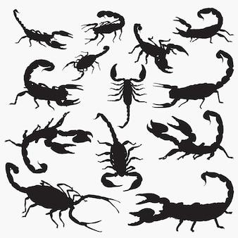 Conjunto de silhueta de escorpião